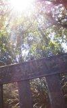 lyra's_bench_oxford_botanic_garden